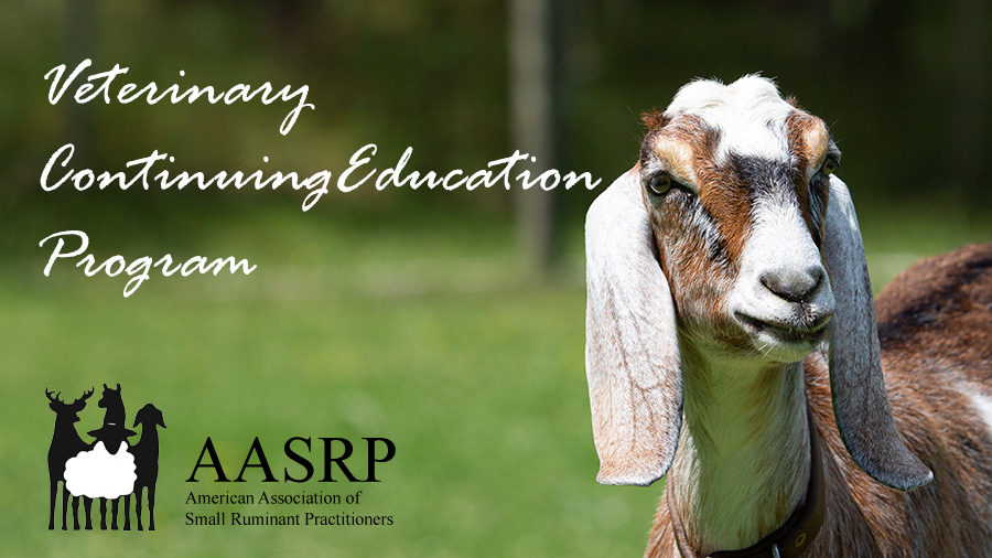 AASRP Continuing Education Schedule